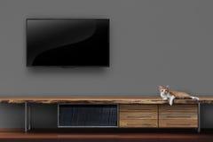 Живущая комната привела ТВ на стене с котенком на fu средств массовой информации деревянного стола Стоковое Фото