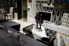живущая роскошная самомоднейшая комната Стоковое Изображение RF