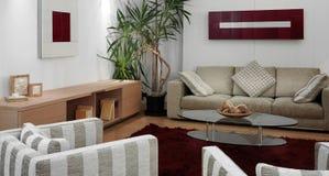 живущая роскошная самомоднейшая комната Стоковая Фотография RF