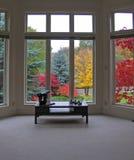 живущий пейзаж комнаты Стоковая Фотография