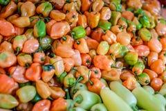 Живые оранжевые перцы habanero стоковые изображения