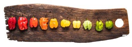 Живые перцы на деревенской доске Стоковое Изображение RF