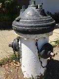 Жидкостный огнетушитель нося черную шляпу и соответствуя черным перчаткам Стоковое Фото