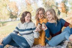 Жизнерадостные привлекательные 3 лучшего друга молодых женщин имея пикник и потеху совместно снаружи стоковые фотографии rf