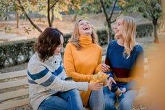 Жизнерадостные привлекательные 3 лучшего друга молодых женщин имея потеху совместно снаружи стоковая фотография rf