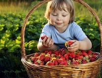 Жизнерадостный мальчик с корзиной ягод стоковая фотография rf