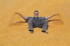 Жизнерадостный усмехаясь фермер на куче урожая мозоли после сбора и бросать его стоковые изображения rf