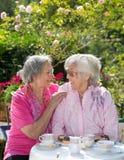 2 жизнерадостных старших женщины имея чай в саде Стоковое фото RF