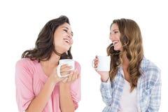Жизнерадостные друзья беседуя пока выпивающ кофе Стоковое фото RF