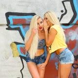 2 жизнерадостных блондинкы Стоковая Фотография