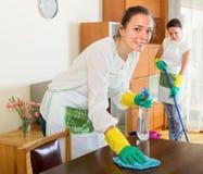 2 жизнерадостных девушки делают чистку Стоковые Изображения RF