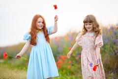 2 жизнерадостных девушки играя с цветками в поле лета Стоковые Изображения RF