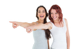 2 жизнерадостных женских друз указывая прочь Стоковое Изображение RF