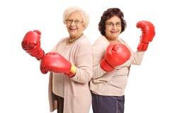 2 жизнерадостных зрелых женщины с перчатками бокса Стоковая Фотография