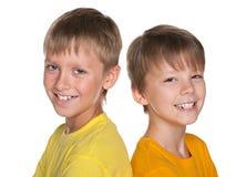 2 жизнерадостных маленьких друз Стоковая Фотография RF