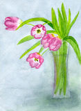 жизни ваза тюльпанов все еще Стоковая Фотография