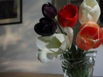 жизни ваза тюльпанов все еще Стоковая Фотография RF