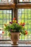 жизни ваза тюльпанов все еще Стоковое Изображение RF