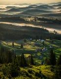 жизни лилии утра село долины все еще Стоковая Фотография RF