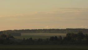 жизни лилии утра село долины все еще Стоковое Изображение RF