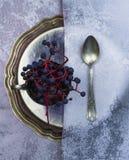 1 жизнь все еще античные серебряная плита, ложка, шелк и пуки одичалых виноградин Конец-вверх Взгляд сверху Стоковое Фото