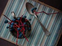1 жизнь все еще Винтаж пуки одичалых виноградин и старой серебряной ложки на бумаге Конец-вверх Стоковое Фото