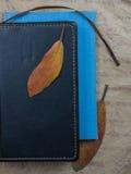 1 жизнь все еще желтый рододендрон лист, книги на бумаге предпосылки старой Конец-вверх Взгляд сверху Стоковые Фото