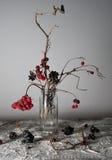 1 жизнь все еще калина разветвляет с ягодами и снегом в прозрачной вазе Стоковое Изображение