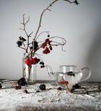 1 жизнь все еще калина разветвляет с ягодами и снегом в прозрачной вазе, стеклянным чайником на деревянном столе Стоковое Изображение