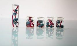 1 жизнь все еще малые опарникы apothecary законсервированных одичалых виноградин на стеклянной предпосылке Конец-вверх Стоковые Фотографии RF