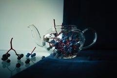 1 жизнь все еще пуки одичалых виноградин в стекловарном горшке Конец-вверх Стоковые Фотографии RF