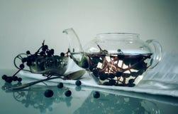 1 жизнь все еще пуки одичалых виноградин в стекловарном горшке Конец-вверх Стоковые Фото