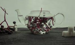 1 жизнь все еще пуки одичалых виноградин в стекловарном горшке Конец-вверх Стоковое Изображение RF
