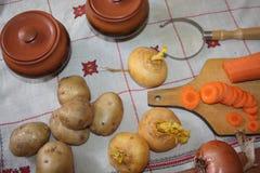 1 жизнь все еще Сбор овощей разнообразия свежих Стоковое Изображение RF