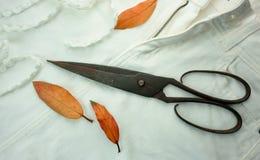 1 жизнь все еще старые ржавые ножницы и листья желтого цвета на белой ткани Конец-вверх Взгляд сверху Стоковая Фотография RF