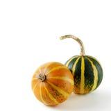 жизнь все еще 2 gourds стоковая фотография rf