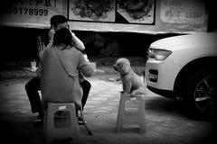 Жизнь в Чунцине Стоковое фото RF
