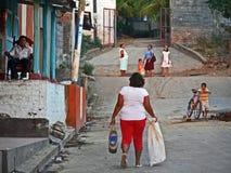 Жизнь в Ometepe Стоковая Фотография