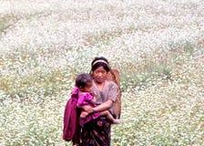 Жизнь деревни в Тибете Стоковые Фотографии RF