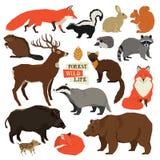 Жизнь леса одичалая изолировала установленных животных иллюстрация вектора