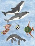 Жизнь моря стоковое изображение