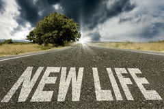 жизнь новая Стоковое фото RF
