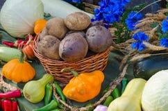 жизнь осени все еще Сбор разнообразия овощей Стоковые Изображения