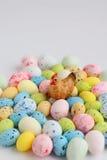 жизнь пасхи все еще Диаграмма курицы сидя на покрашенные яичка Стоковые Изображения
