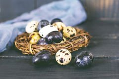 жизнь пасхи все еще Пасхальные яйца Стоковое Изображение RF