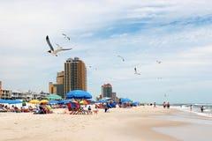 Жизнь пляжа Мексиканского залива Алабамы Стоковое Изображение RF