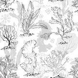 жизнь подводная Безшовная monochrome предпосылка с водорослями также вектор иллюстрации притяжки corel Стоковое Изображение