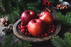 жизнь рождества все еще Красно- очень вкусные яблоки, клюквы, гайки, конусы сосны и ветви ели Стоковая Фотография