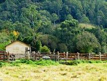 жизнь сельская Стоковое фото RF