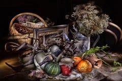 жизнь сельская все еще вводит в моду Стоковая Фотография RF